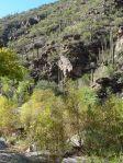 am Grund des Sabino Canyons