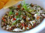 Conch Salat