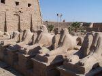 Widderallee in Luxor