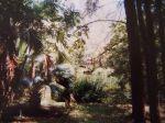 Dschungel im Haller-Park