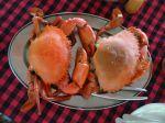 leckere Krabben