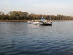 Rheinfähre bei Rhinau