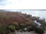 Mündung des Ebro