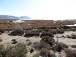 Salinen von Cabo de Gata